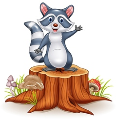 Cartoon funny raccoon cartoon waving hand vector image vector image