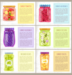 Fruit or veg labeled conservation bottles set vector