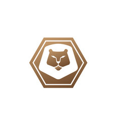 orange lion head and face for logo design animal vector image