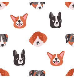seamless pattern with cute funny dogs faces vector image