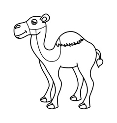camel desert isolated icon design vector image
