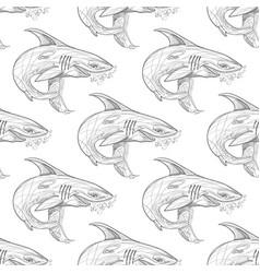 shark pattern on white background vector image vector image