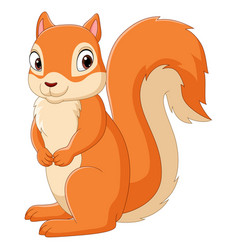 cartoon happy squirrel isolated vector image