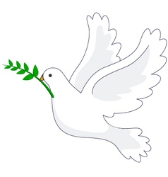 Dove Peace vector image