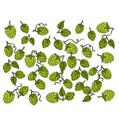 Hops background cartoon vector