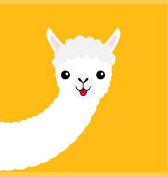 llama alpaca animal face long neck cute cartoon vector image