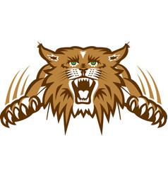 Wildcat logo mascot vector