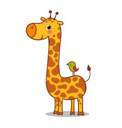 cute giraffe calf standing vector image