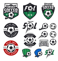 Set of soccer labels emblems and design elements vector image vector image