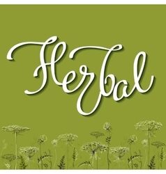 Calligraphy sign herbal 2 vector image