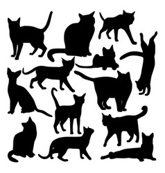 collection black icons domestic cats vector image