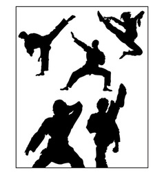 Karate pose vector