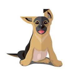puppy german shepherd minimalist style vector image