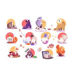 set funny cat icons cute pet cartoon character vector image