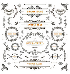 set vintage decorations elements vector image
