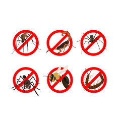 6 dangerous insects vector