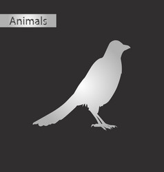 black and white style icon of magpie vector image