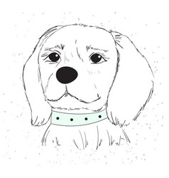 Cute dog with a blue collar vector