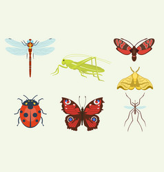insects icons isolated on background vector image