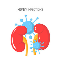 kidney infection concept vector image