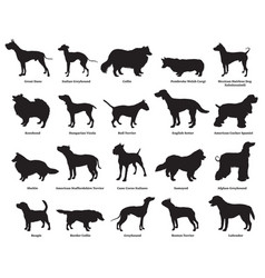 Set dogs silhouettes-2 vector