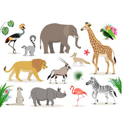 Set of cute african animals icons isolated on vector