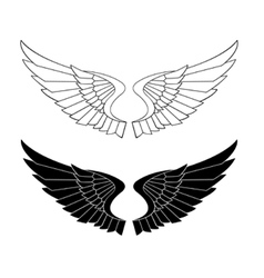 stylized wings vector image