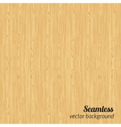 Seamless wood pattern vector image