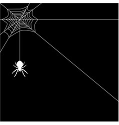banner spider web vector image
