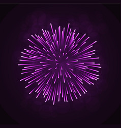 Beautiful pink firework bright firework isolated vector