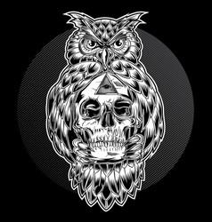 Bird owl skull black vector