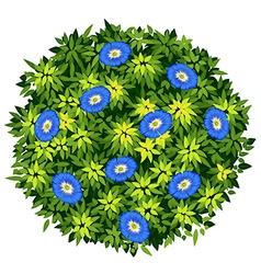 Blue flower on green bush vector image