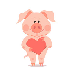 cartoon little pig with heart in hand the year of vector image