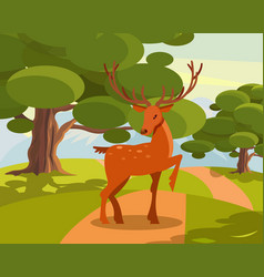 Spotted deer with branched horns wild animal vector
