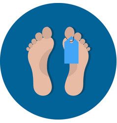 Toe tag icon vector