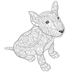 Adult coloring bookpage a cute dog image vector