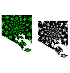 Baltimore city - map is designed cannabis leaf vector