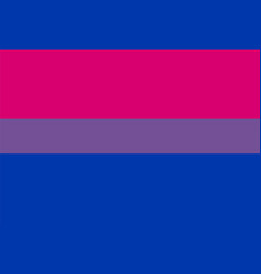 Bi flag or lgbt vector