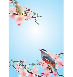 Birds on the blossoming cherry detailedvector vector
