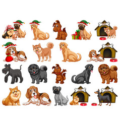 different funny dogs in cartoon style isolated vector image