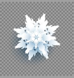 snow transparent background vector image
