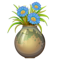 A big pot with blue flowers vector