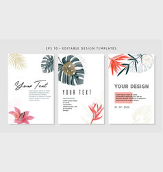 Bright tropical design template text area vector