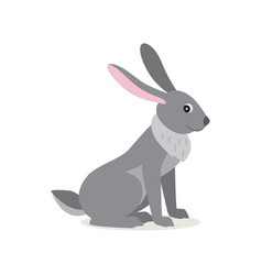 cute gray rabbit hare isolated on white background vector image