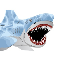 great white shark vector image