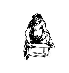 Hand drawn sketch of monkey isolated on vector