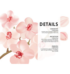 Orchid branch realistic nature poster romantic vector