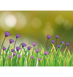 A stationery with a garden of violet flowers vector image
