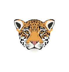 Abstract color jaguar head vector