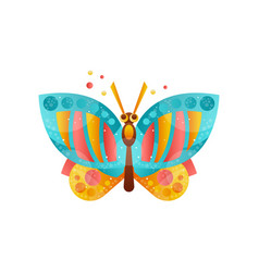 Beautiful butterfly insect on vector